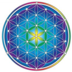 SUNSEAL FLOWER OF LIFE