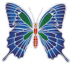 SUNSEAL ULYSSES BUTTERFLY