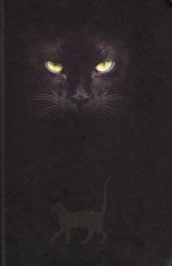 CAT'S EYES JOURNAL small